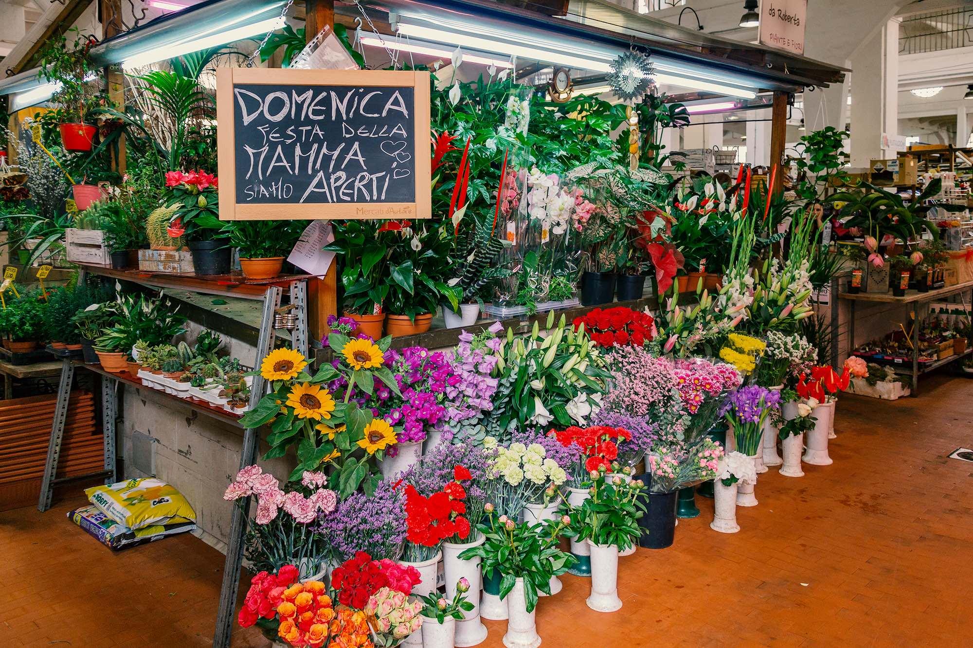 Immagini Piante E Fiori da roberta piante e fiori - mercati d'autore